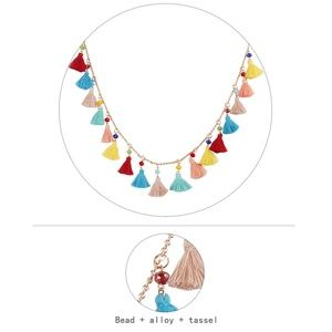 Jewelry - Colorful Tassel Necklace